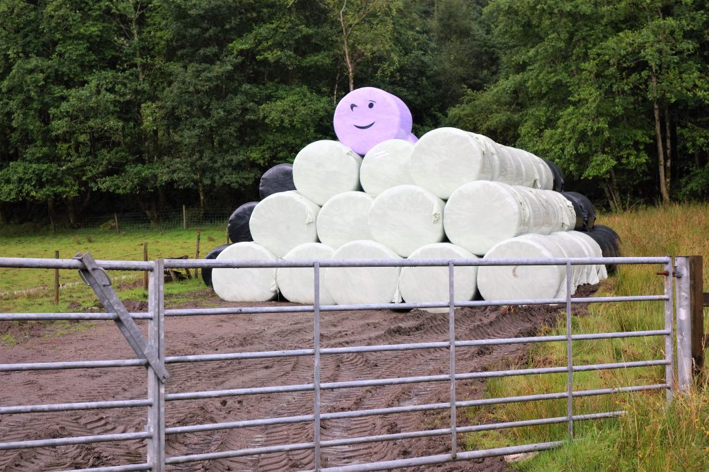 Coastal Road Trip, Dunoon, wrapped bales, smiley face