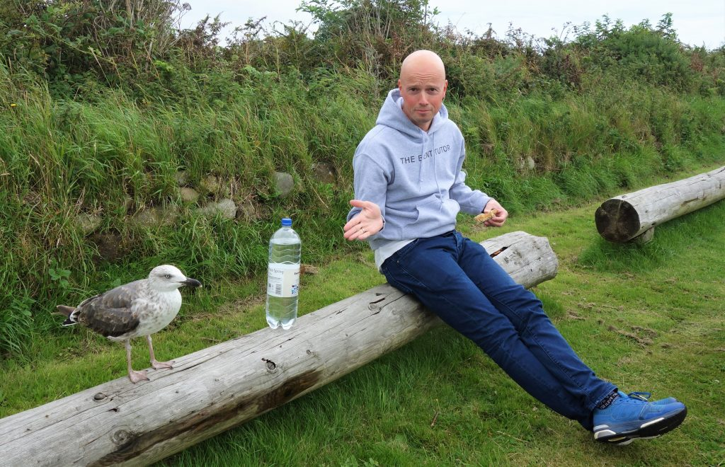 Coastal Road Trip, South Walney, Nature Reserve, Seagull, Jarno