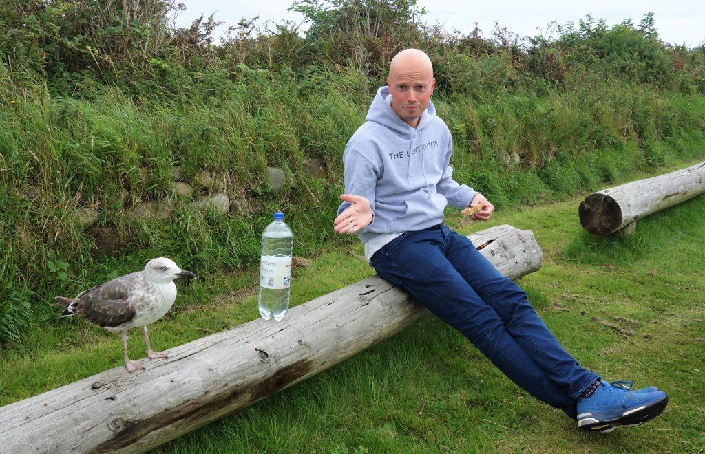 Coastal Road Trip, South Walney, Nature Reserve, Seagull, Jarno
