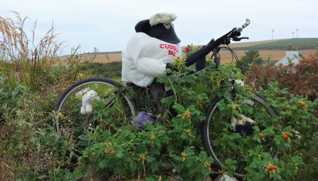 Coastal Road Trip, Drummore, Sheep on bike Scarecrow
