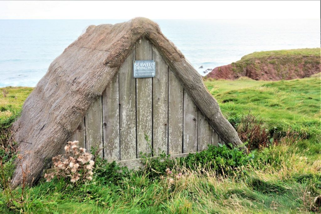 Coastal Road Trip, Freshwater West, Seaweed Hut
