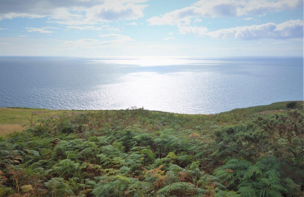 Coastal Road Trip, Badbea Clearance Village, View to North Sea