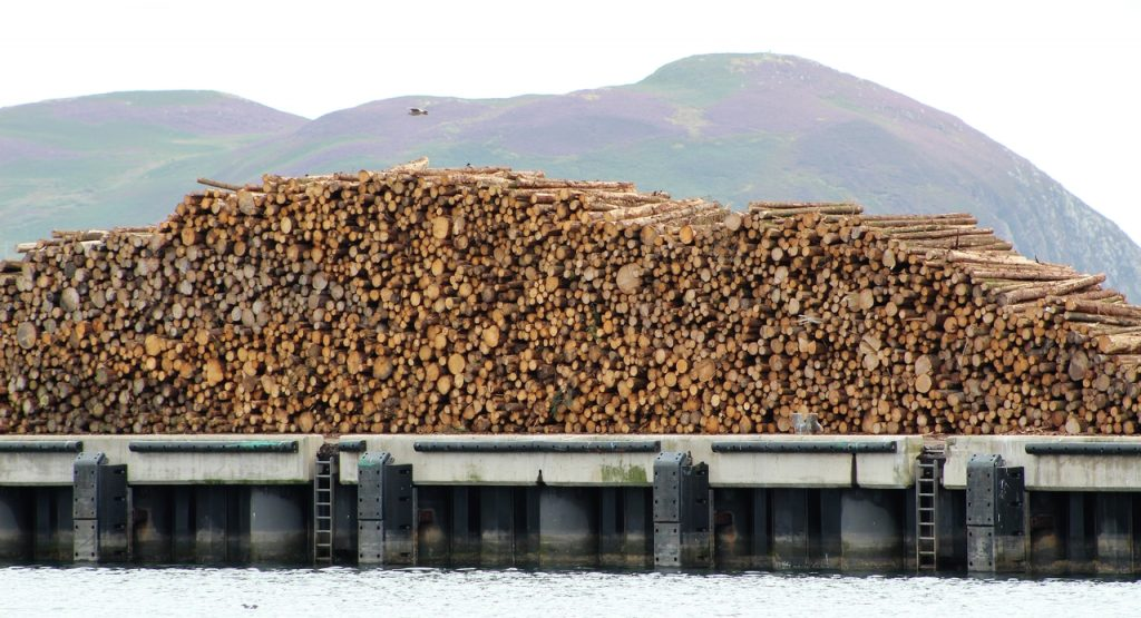Coastal Road Trip, Campbeltown, Harbour, Logs