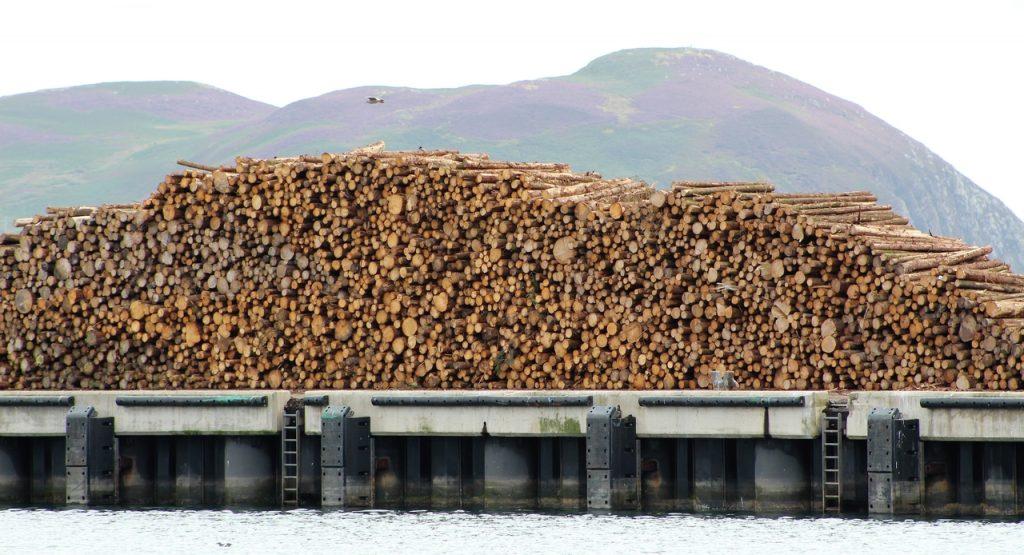 Coastal Road Trip, Campbeltown, Harbour, Logs