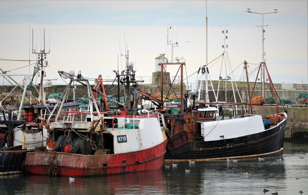 Coastal Road Trip, Pittenweem, Harbour, Fishing Boats