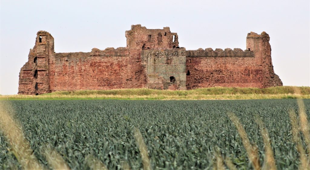 Coastal Road Trip, Tantallon Castle, Field