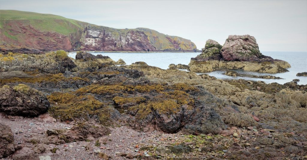 Coastal Road Trip, St Abbs, Harbour