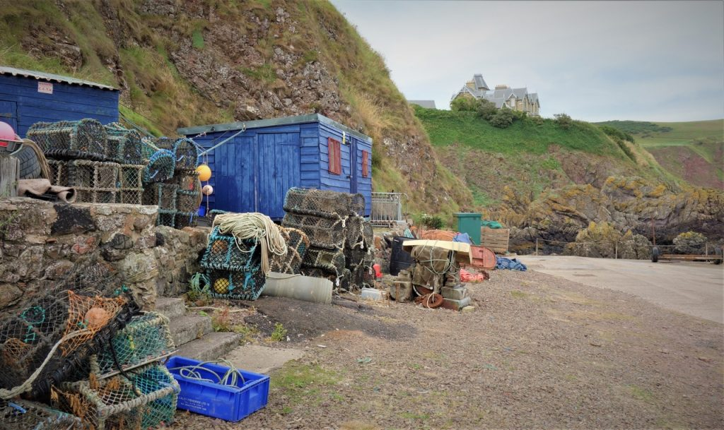 Coastal Road Trip, St Abbs, Harbour, Blue Hut, Cliff House