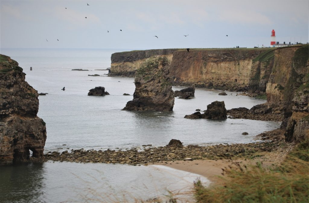 Coastal Road Trip, Marsden Bay, Souter Lighthouse, Sunderland