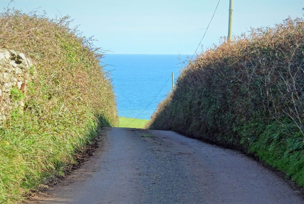 Coastal Road Trip, Start Point, Devon Lane, Seaview, Blue Sky, Green Field