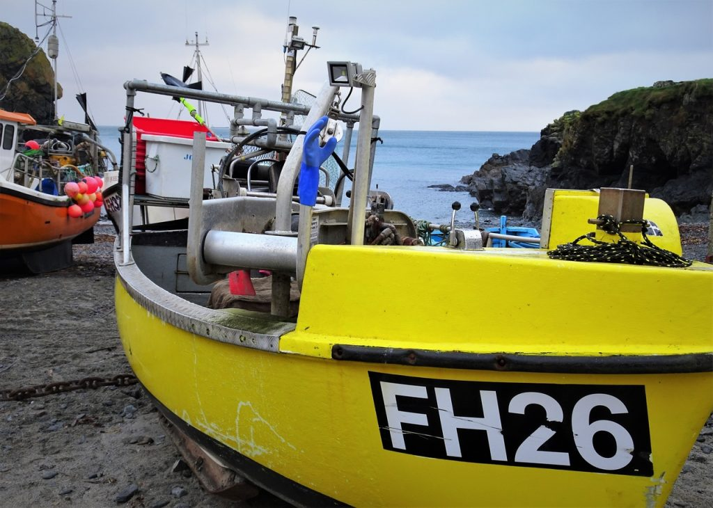 Coatal Road Trip, Cadgwith, Cove, Yellow Fishing Boat, FH26