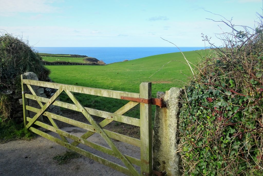 Coastal Road Trip, St Teath, Green Field, Farm Gate, Port Isaac Bay