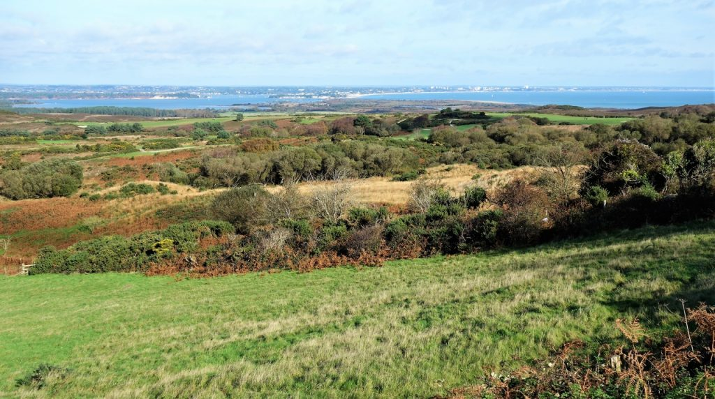 Coastal Road Trip, Road from Corfe Castle to Studland, B3351, Poole Harbour