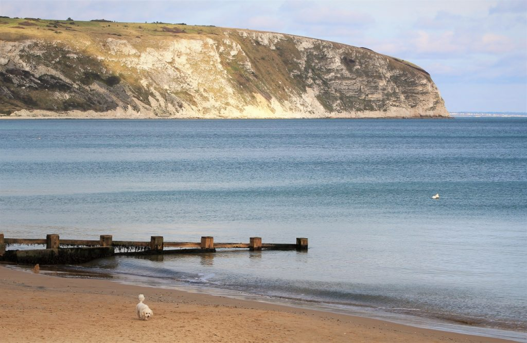 Coastal Road Trip, Swanage, Beach, Bay