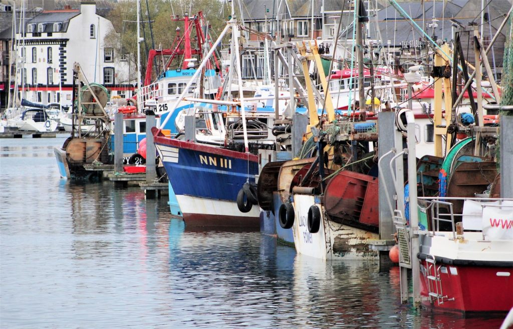 Coastal Road Trip, Plymouth, Sutton Harbour, Boats