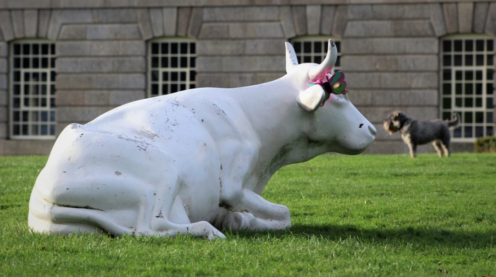 Coastal Road Trip, Plymouth, Royal William Yard, New Cooperage, Cow, Bull, Dog
